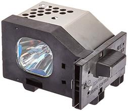 LAMP HOUSING TY-LA1000 FOR PANASONIC TV PROJECTOR REPLACEMEN